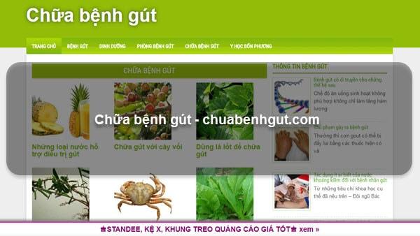 Chữa bệnh gút – chuabenhgut.com
