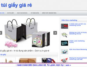 In túi giấy giá rẻ - intuigiaygiare.com